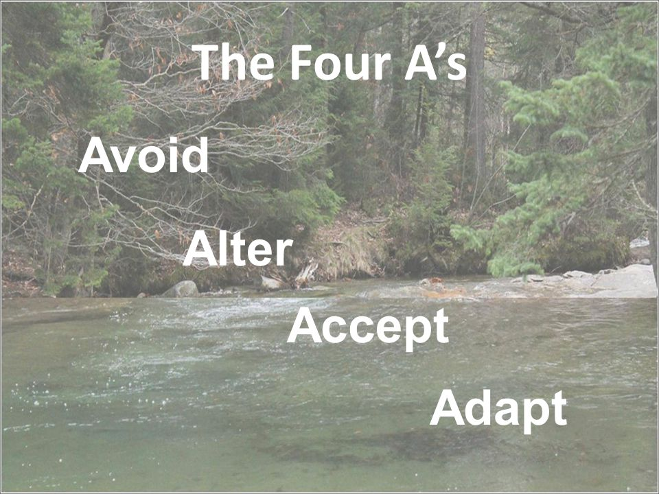 The Four A's Avoid Alter Adapt Accept