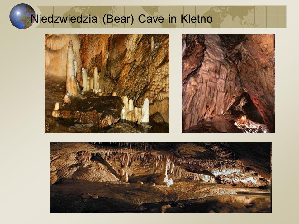Niedzwiedzia (Bear) Cave in Kletno