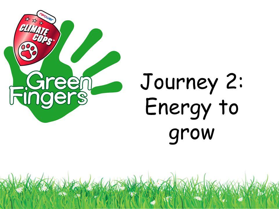 Journey 2: Energy to grow