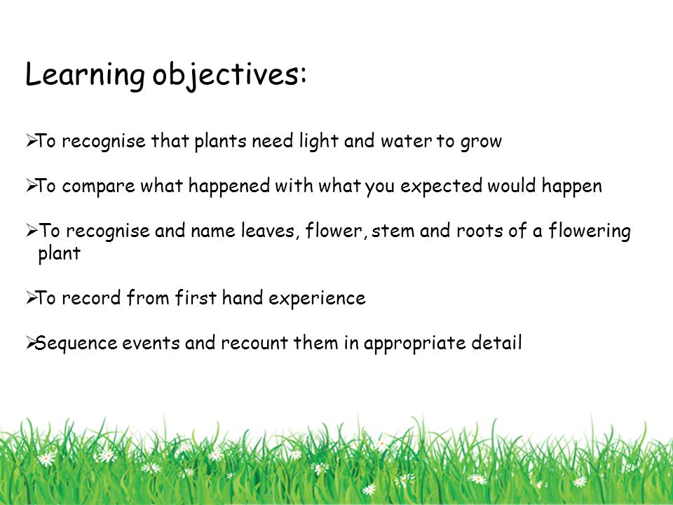 Learning objectives:  To recognise that plants need light and water to grow  To compare what happened with what you expected would happen  To recog