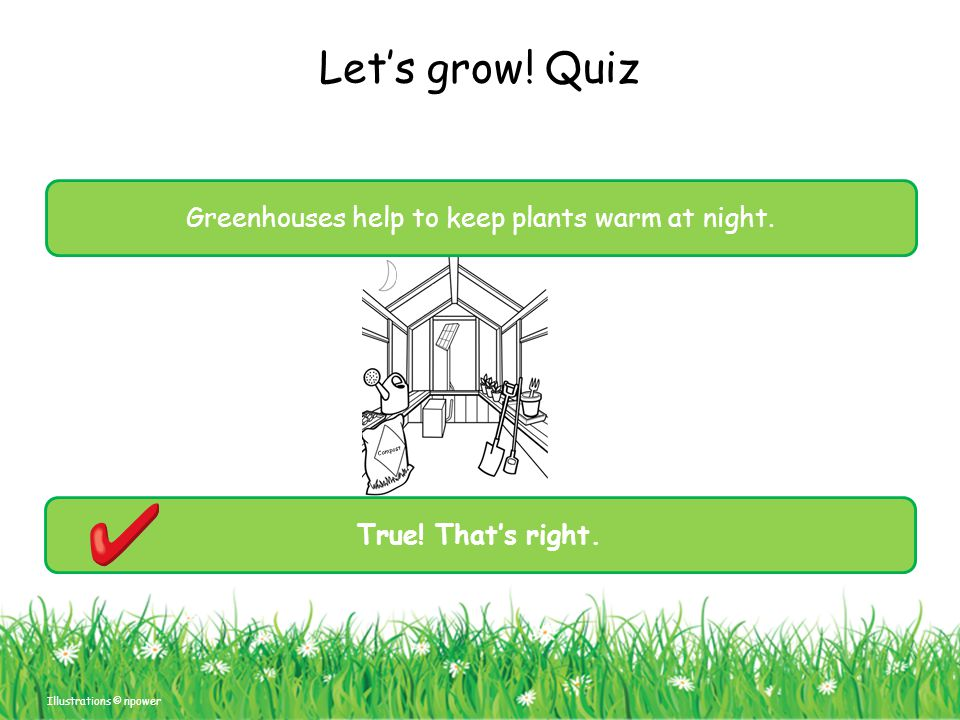 Let's grow! Quiz Illustrations © npower Compost Greenhouses help to keep plants warm at night. True! That's right.