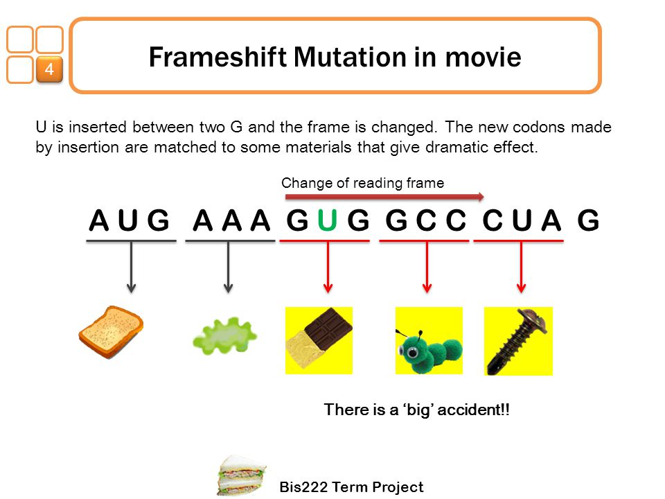 Bis222 Term Project 1 Frameshift Mutation in movie U is inserted between two G and the frame is changed. The new codons made by insertion are matched