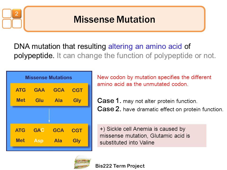 Bis222 Term Project 1 Missense Mutation DNA mutation that resulting altering an amino acid of polypeptide. It can change the function of polypeptide o