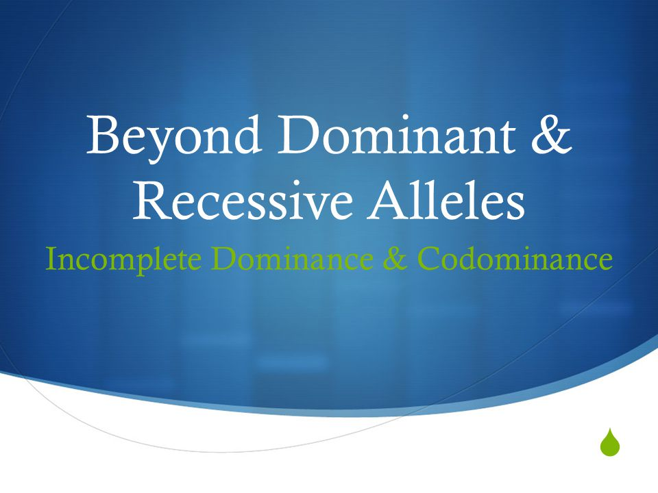  Beyond Dominant & Recessive Alleles Incomplete Dominance & Codominance