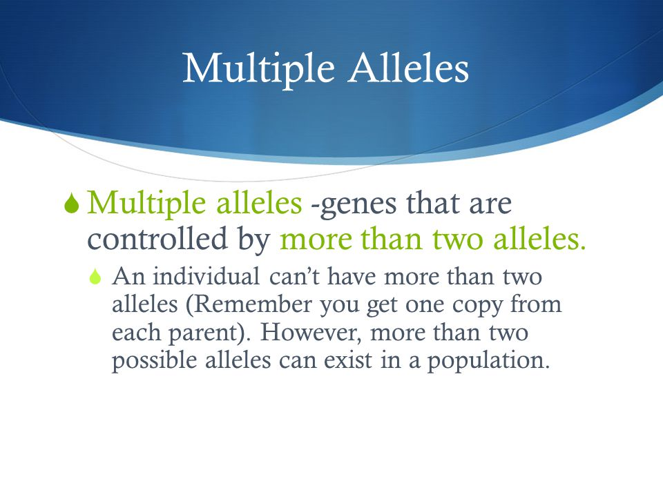 Multiple Alleles  Multiple alleles -genes that are controlled by more than two alleles.  An individual can't have more than two alleles (Remember yo