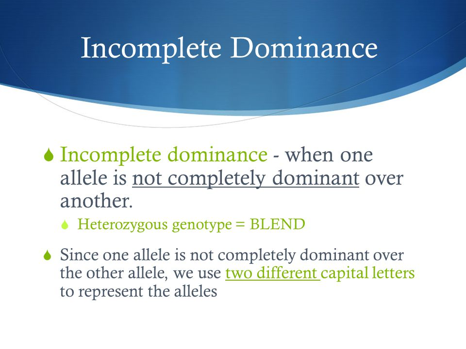 Incomplete Dominance  Incomplete dominance - when one allele is not completely dominant over another.  Heterozygous genotype = BLEND  Since one all