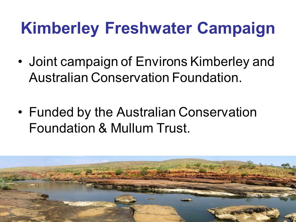Kimberley Freshwater Campaign Joint campaign of Environs Kimberley and Australian Conservation Foundation.