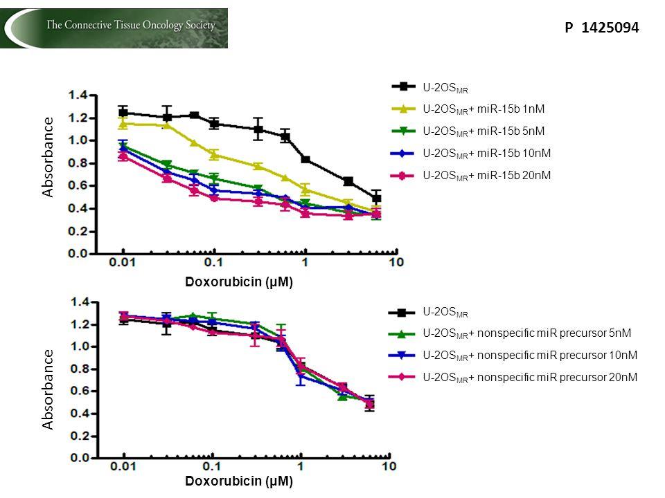 Absorbance Doxorubicin (μM) U-2OS MR U-2OS MR + miR-15b 1nM U-2OS MR + miR-15b 5nM U-2OS MR + miR-15b 10nM U-2OS MR + miR-15b 20nM Doxorubicin (μM) Ab