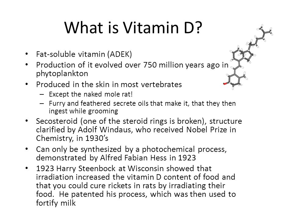 What is Vitamin D.