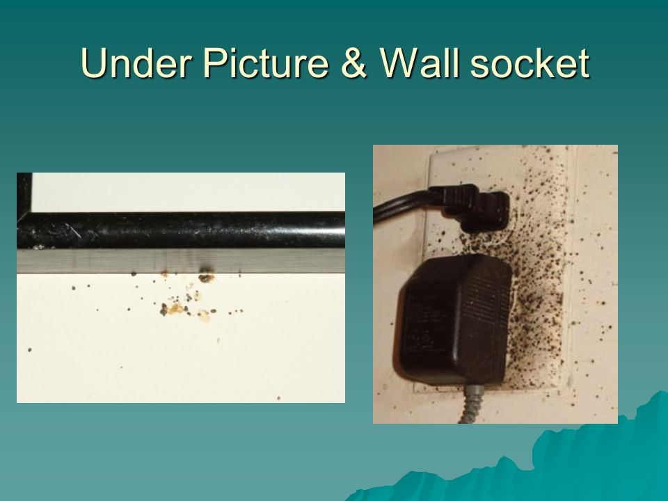 Under Picture & Wall socket
