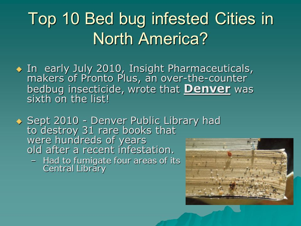 Top 10 Bed bug infested Cities in North America.