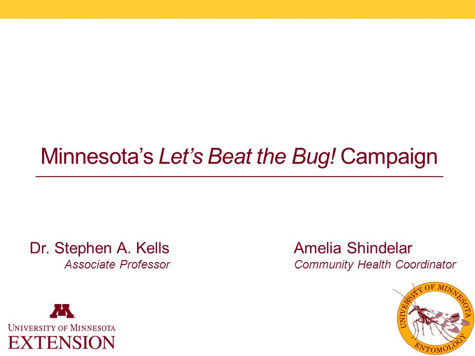 Minnesota's Let's Beat the Bug. Campaign Amelia Shindelar Community Health Coordinator Dr.