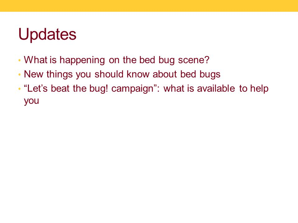 Updates What is happening on the bed bug scene.