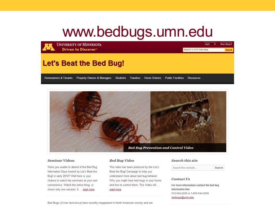 www.bedbugs.umn.edu