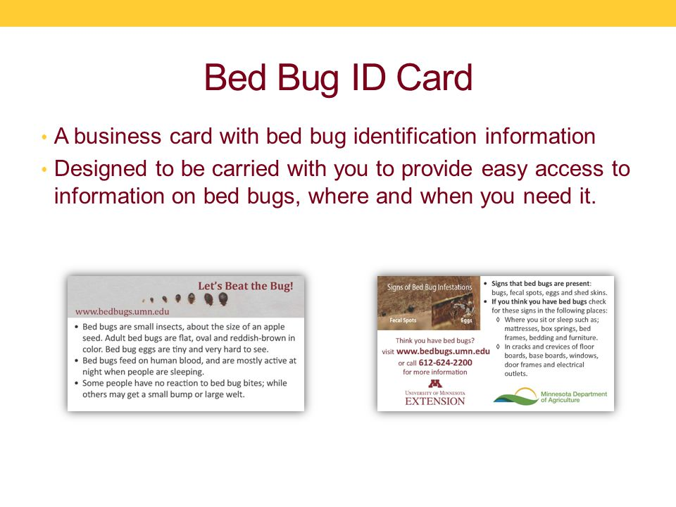 Bed Bug ID Card A business card with bed bug identification information Designed to be carried with you to provide easy access to information on bed bugs, where and when you need it.