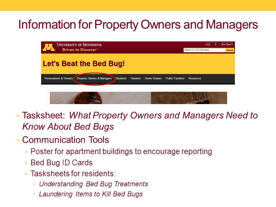 Information for Property Owners and Managers Tasksheet: What Property Owners and Managers Need to Know About Bed Bugs Communication Tools Poster for apartment buildings to encourage reporting Bed Bug ID Cards Tasksheets for residents: Understanding Bed Bug Treatments Laundering Items to Kill Bed Bugs