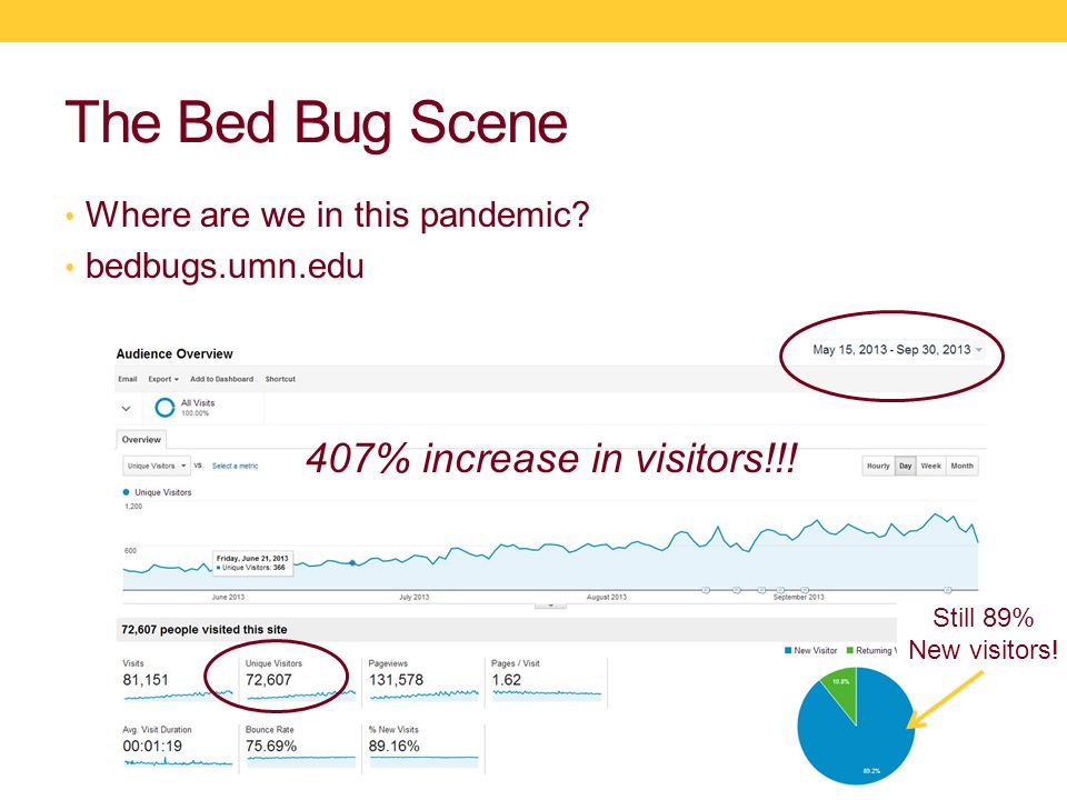 The bed bug's nose is not just here!