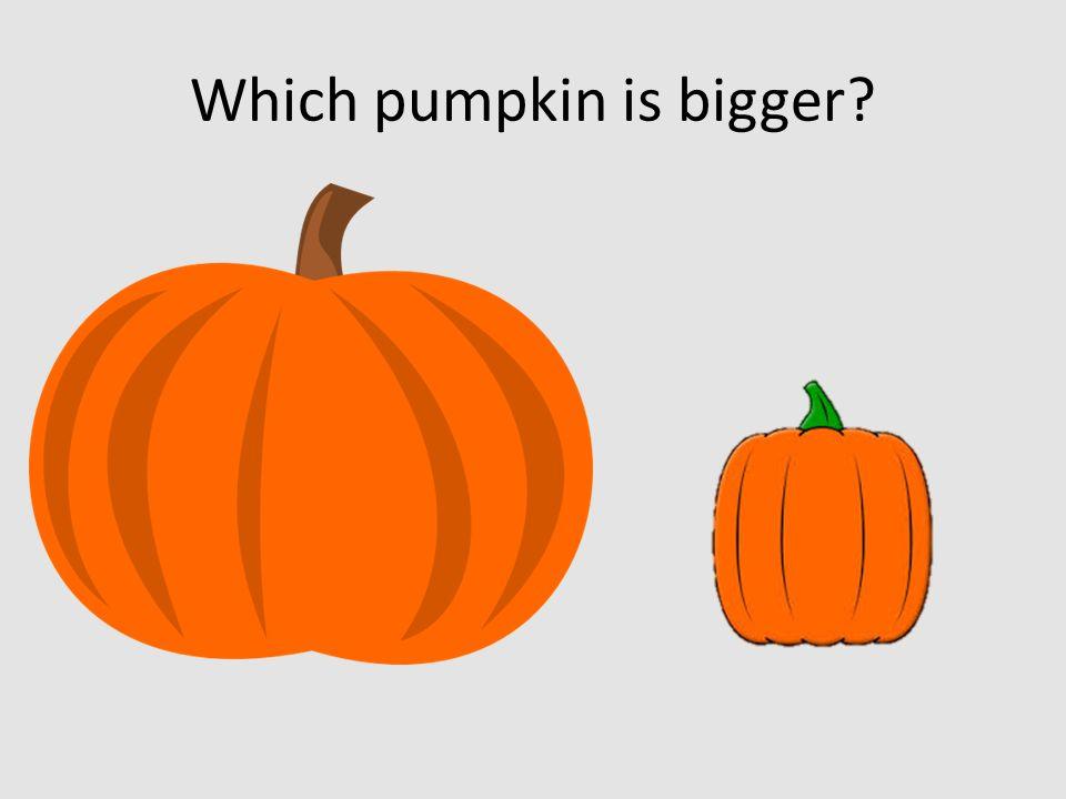 Which pumpkin is bigger
