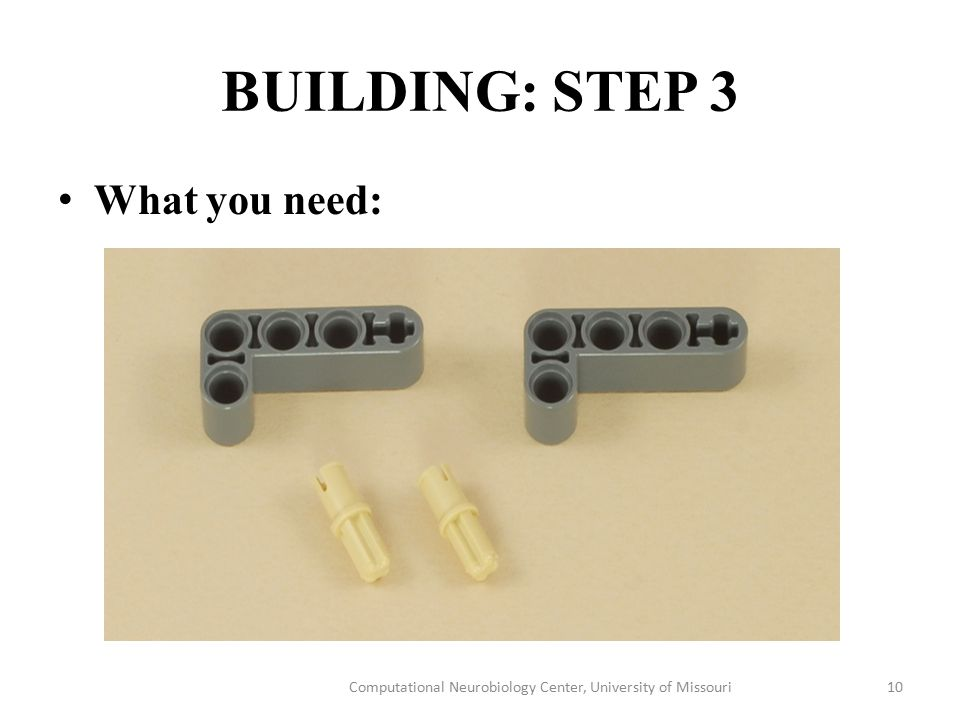 BUILDING: STEP 3 What you need: Computational Neurobiology Center, University of Missouri10
