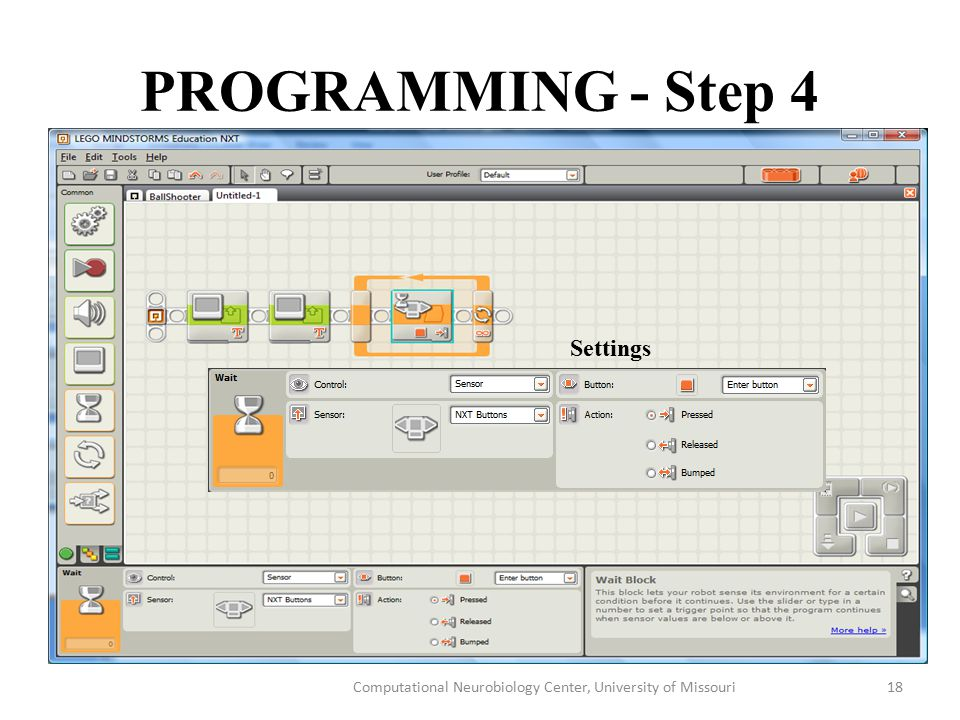 PROGRAMMING - Step 4 Computational Neurobiology Center, University of Missouri18 Settings