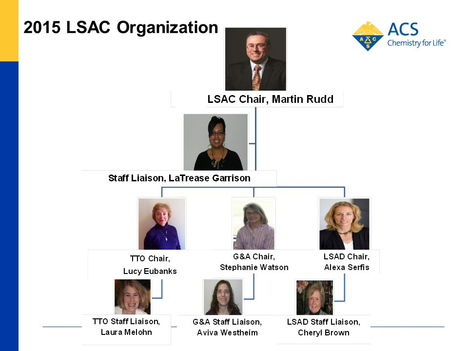 Leadership Institute Goals Pre-Leadership Institute Webinar: Preparing You to be a Successful Chair/Officer American Chemical Society Martin Rudd, 2015 LSAC Chair