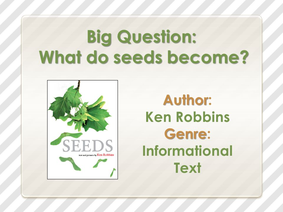 Big Question: What do seeds become? Author Author: Ken Robbins Genre Genre: Informational Text
