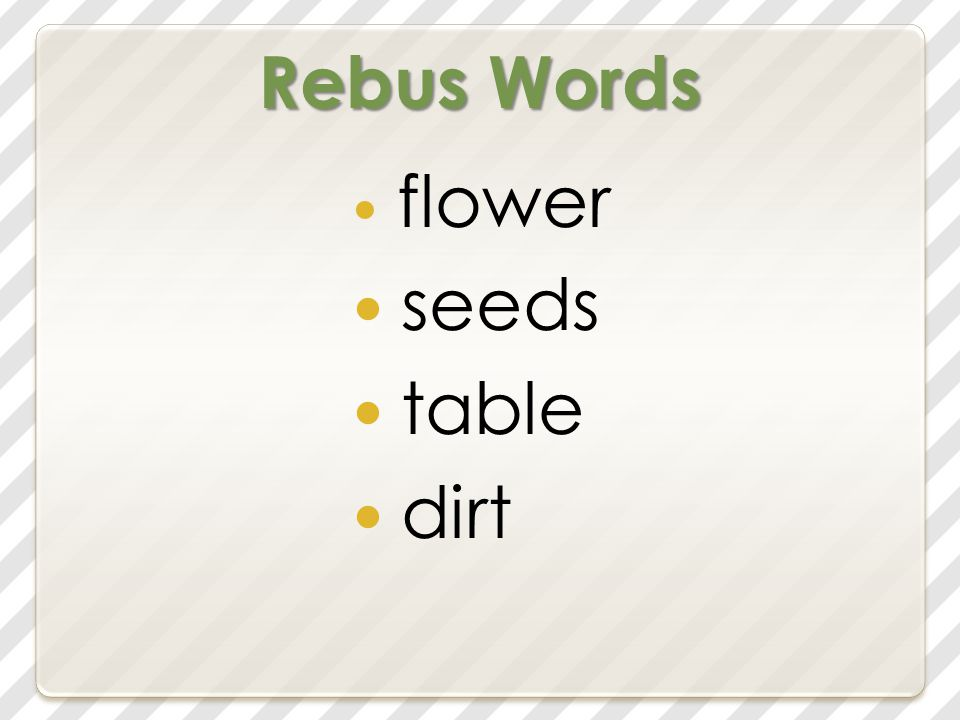 Rebus Words flower seeds table dirt