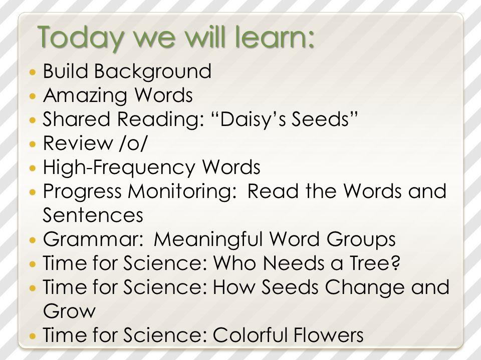 Today we will learn: Build Background Amazing Words Shared Reading: Daisy's Seeds Review /o/ High-Frequency Words Progress Monitoring: Read the Words and Sentences Grammar: Meaningful Word Groups Time for Science: Who Needs a Tree.