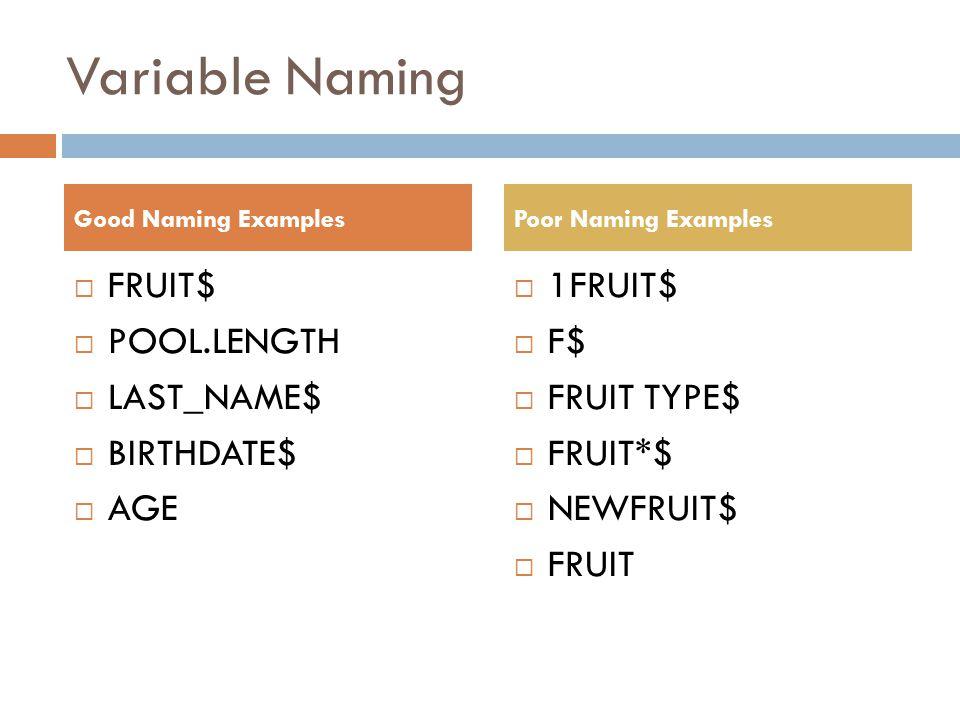 Variable Naming  FRUIT$  POOL.LENGTH  LAST_NAME$  BIRTHDATE$  AGE  1FRUIT$  F$  FRUIT TYPE$  FRUIT*$  NEWFRUIT$  FRUIT Good Naming ExamplesPoor Naming Examples