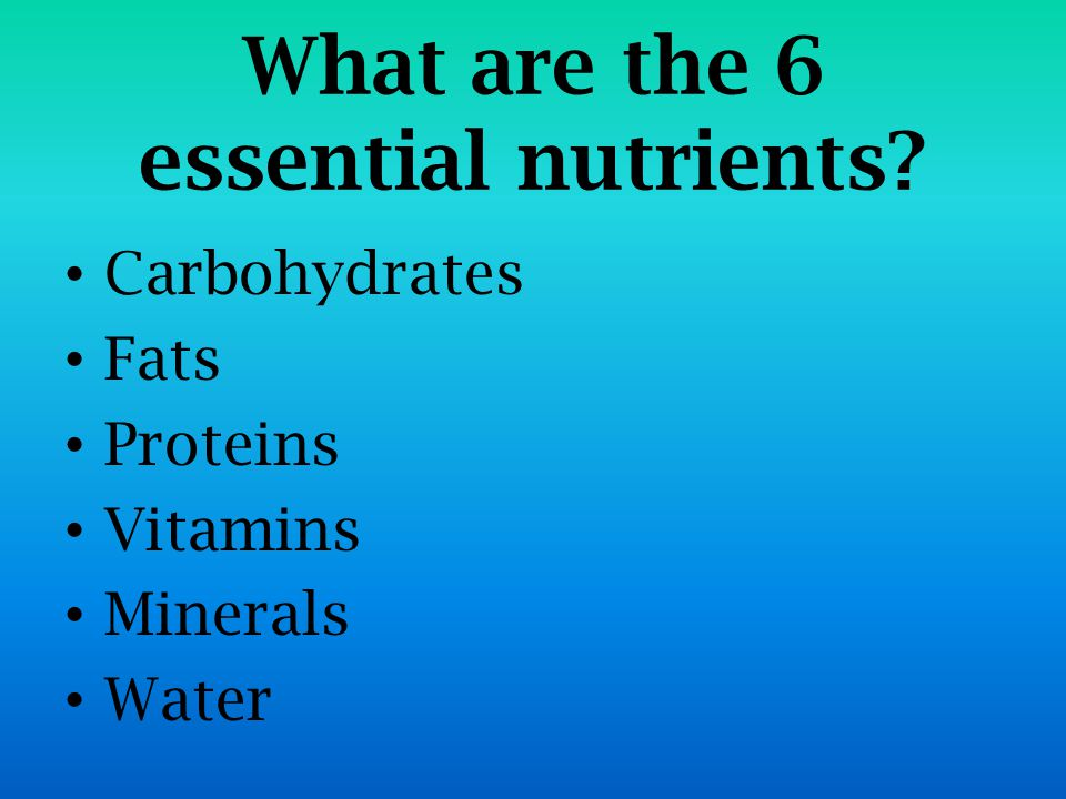 Carbohydrates The body's most important source of energy Examples: Sugars, starches, fiber, fruit, veggies, breads and pastas