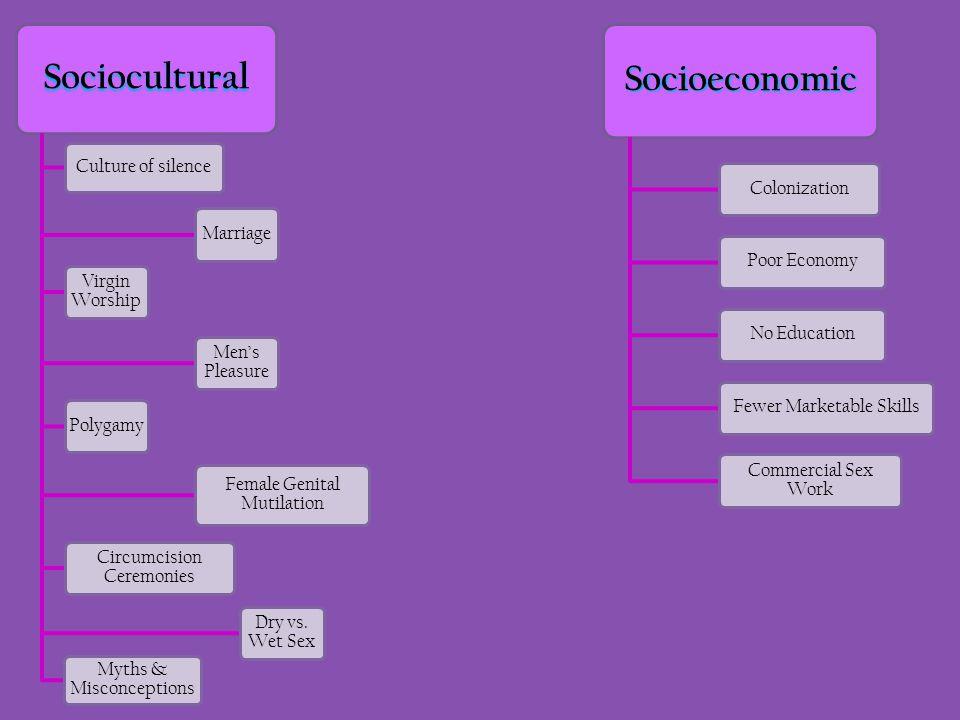 Sociocultural Culture of silence Marriage Virgin Worship Men's Pleasure Polygamy Female Genital Mutilation Circumcision Ceremonies Dry vs. Wet Sex Myt