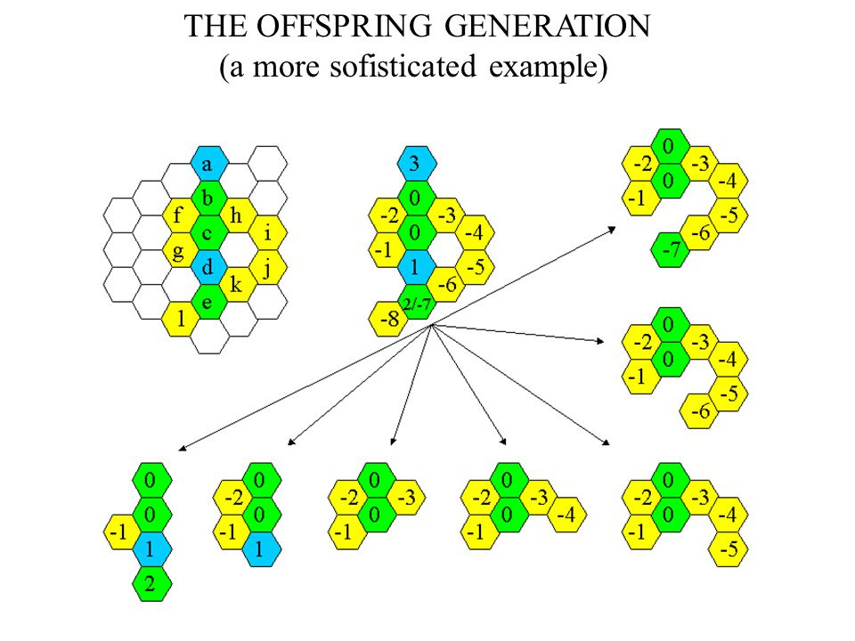 THE OFFSPRING GENERATION (a more sofisticated example)