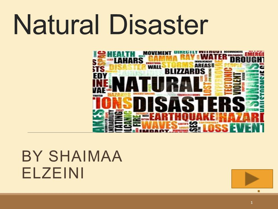 Natural Disaster BY SHAIMAA ELZEINI 1
