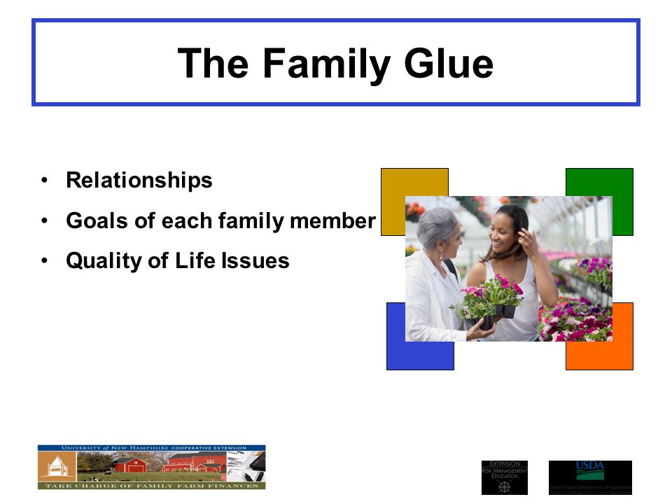 The Family Glue Relationships Goals of each family member Quality of Life Issues