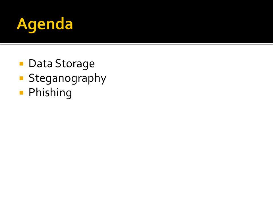  Data Storage  Steganography  Phishing