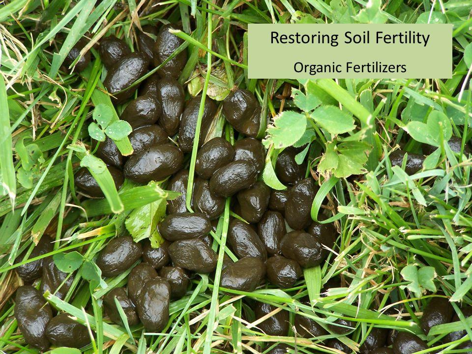 Restoring Soil Fertility Organic Fertilizers