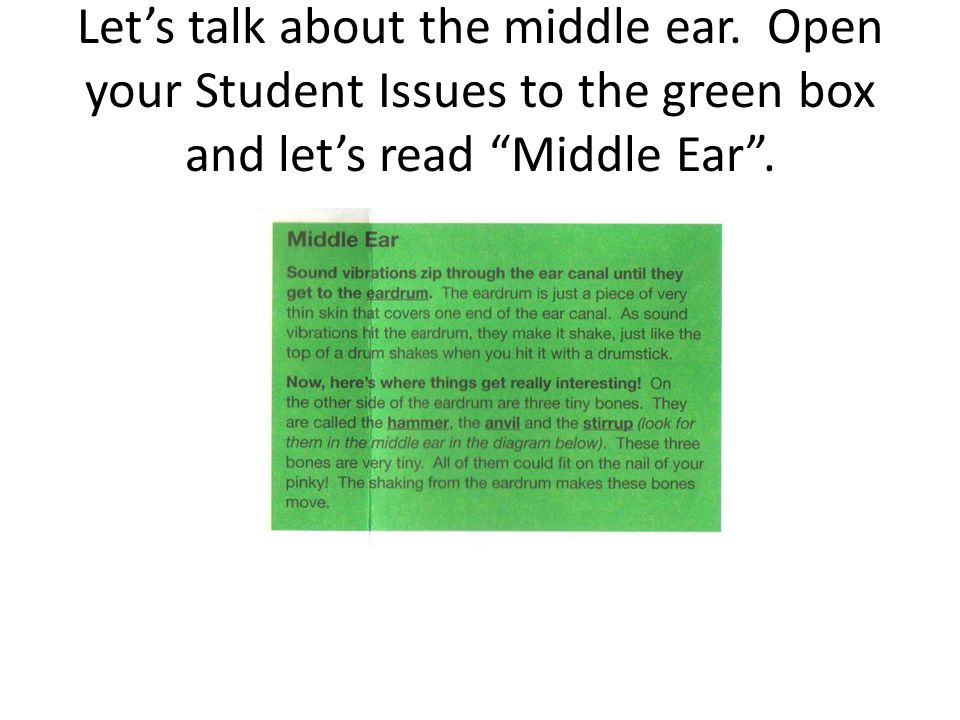 Let's talk about the middle ear.