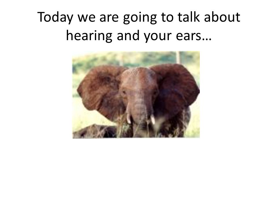 Today we are going to talk about hearing and your ears…