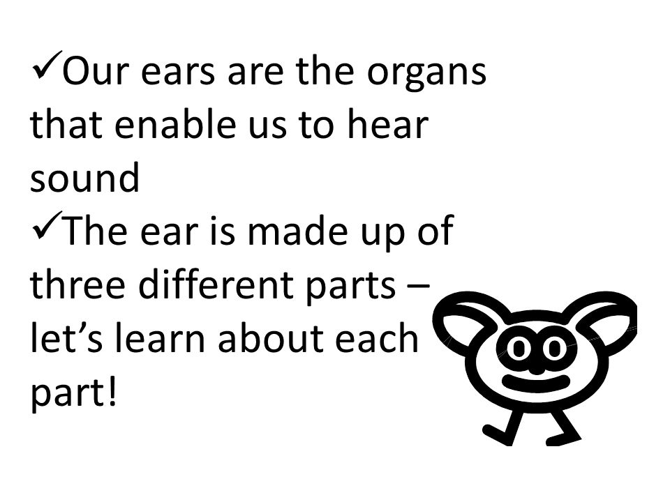 Our ears are the organs that enable us to hear sound The ear is made up of three different parts – let's learn about each part!