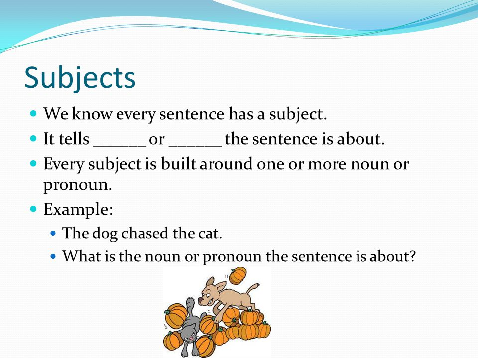 Subjects We know every sentence has a subject. It tells ______ or ______ the sentence is about.