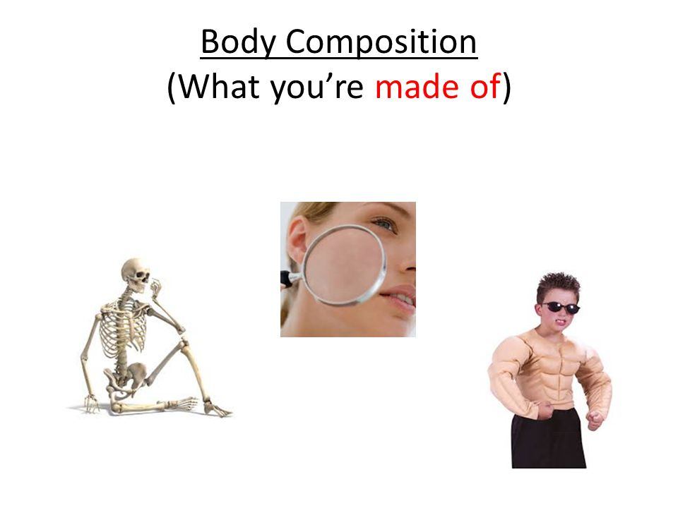 Body Composition (What you're made of)