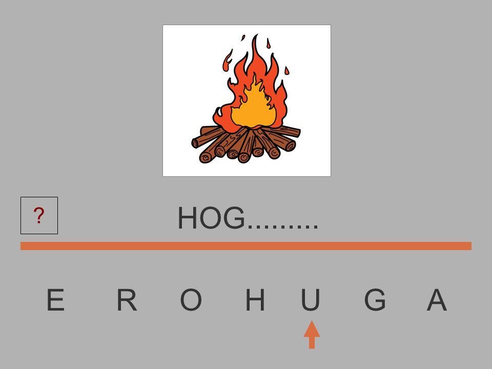 E R O H U G A HO............