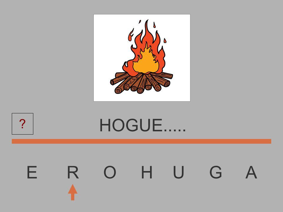 E R O H U G A HOGU.......