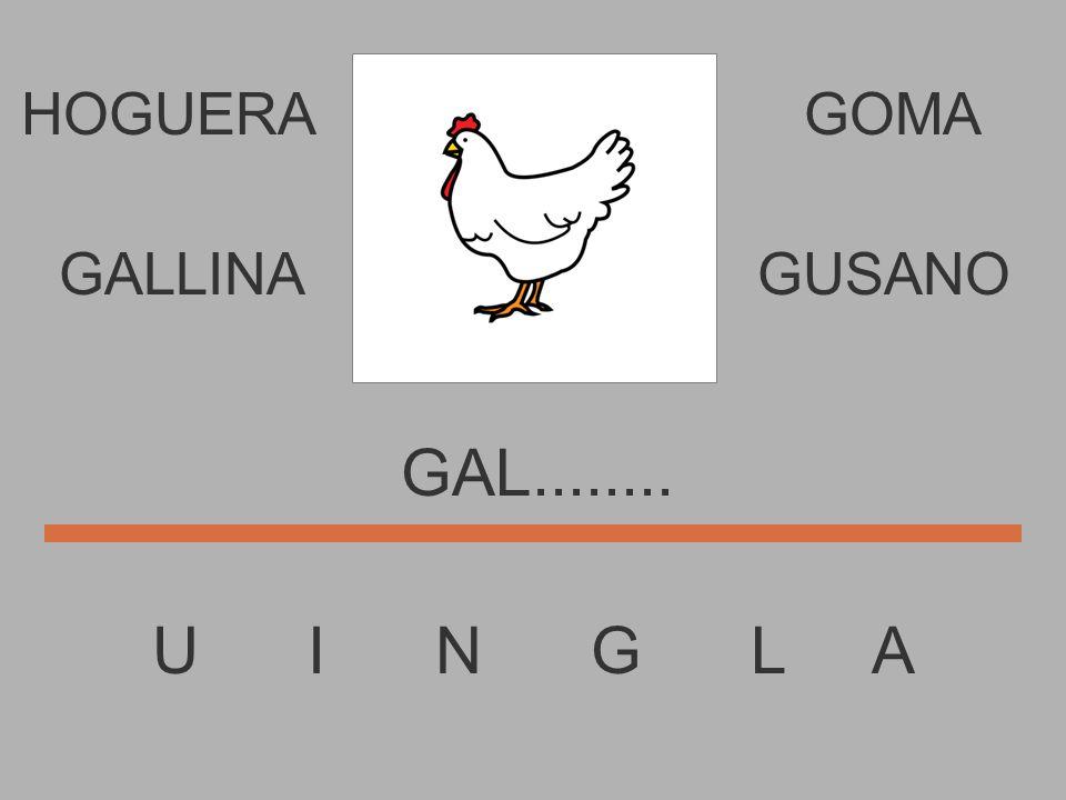 HOGUERA U I N G L A GOMA GA.......... GALLINAGUSANO