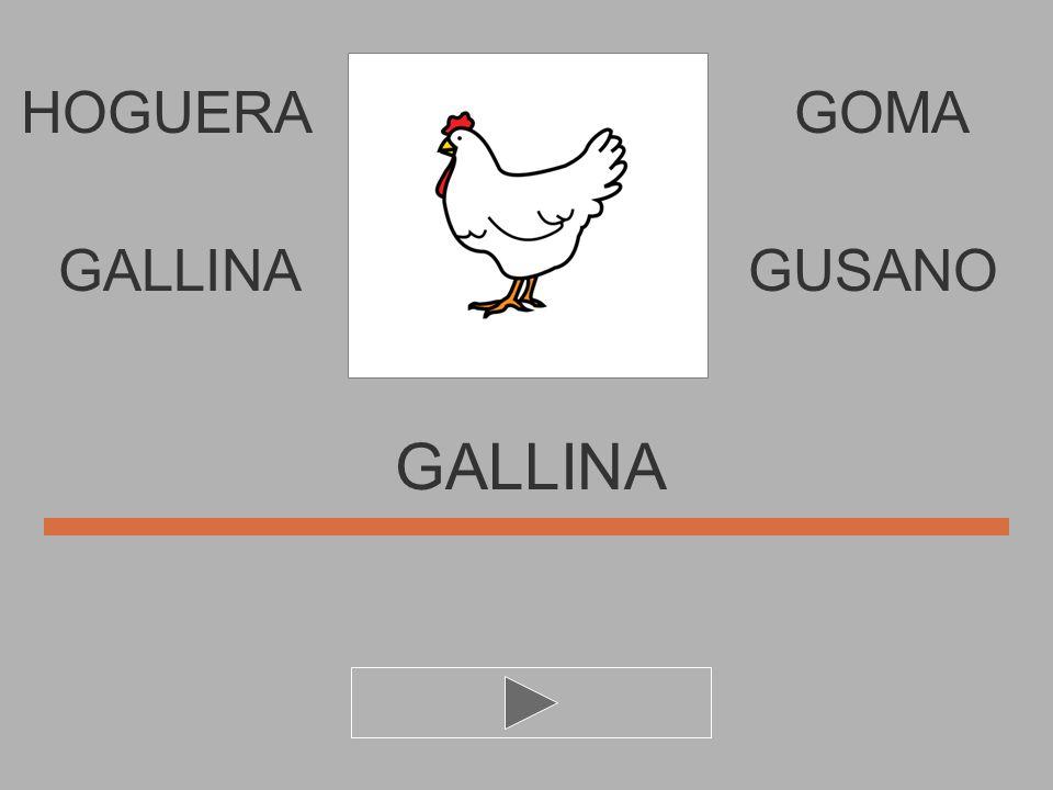 HOGUERA U I N G L A GOMA GALLIN... GALLINAGUSANO