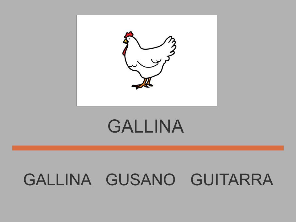 GATO GOMA GUSANO GATO