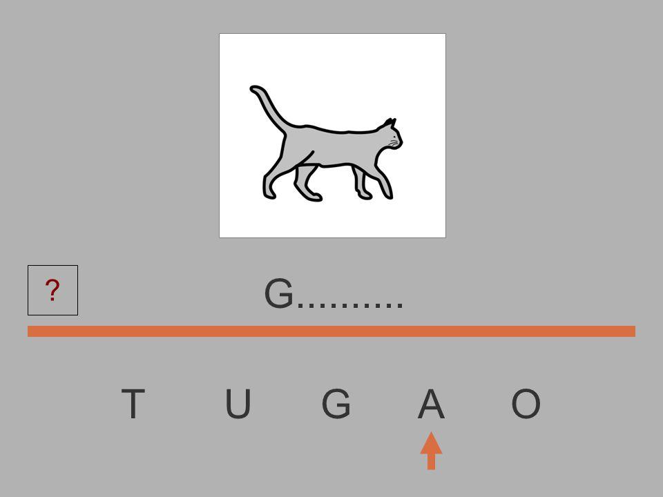 T U G A O............. ?