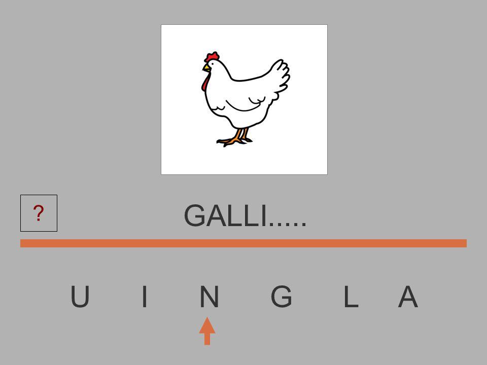 U I N G L A GALL...... ?
