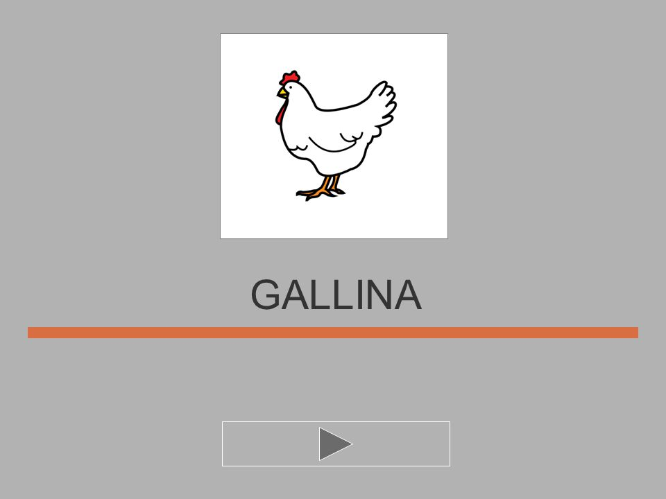 U I N G L A GALLIN... ?