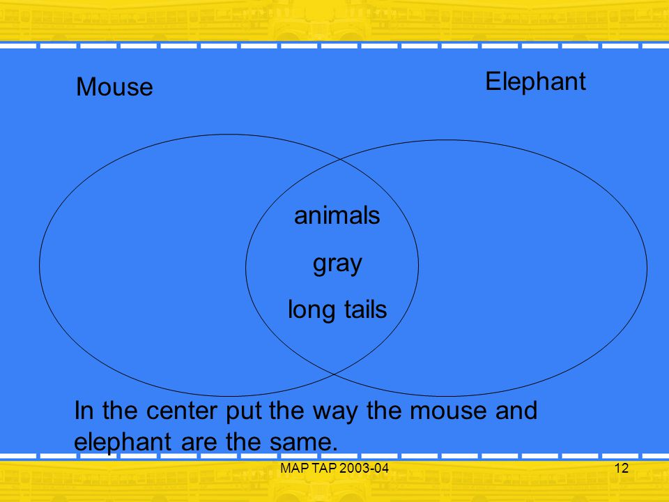 MAP TAP 2003-0412 Mouse Elephant In the center put the way the mouse and elephant are the same. animals gray long tails